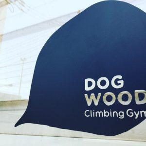 DogWood調布店のクライミングウォール